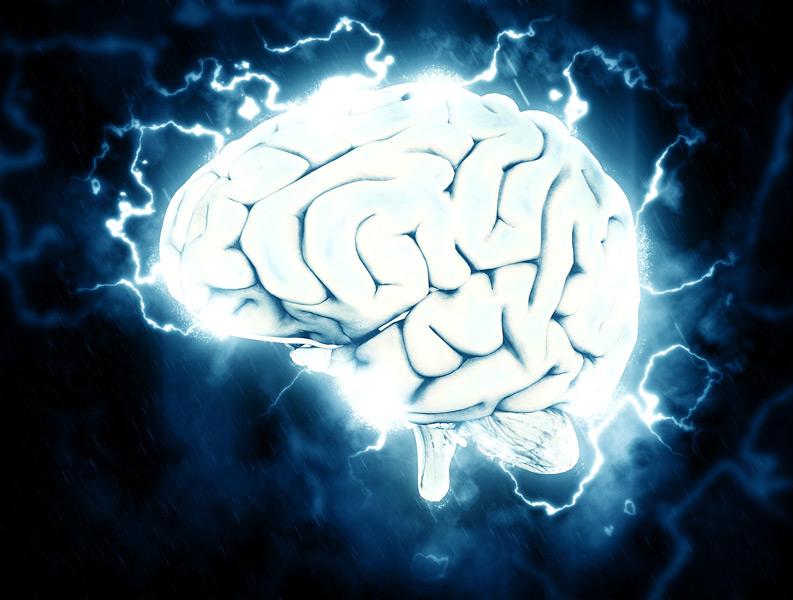 Smegenis
